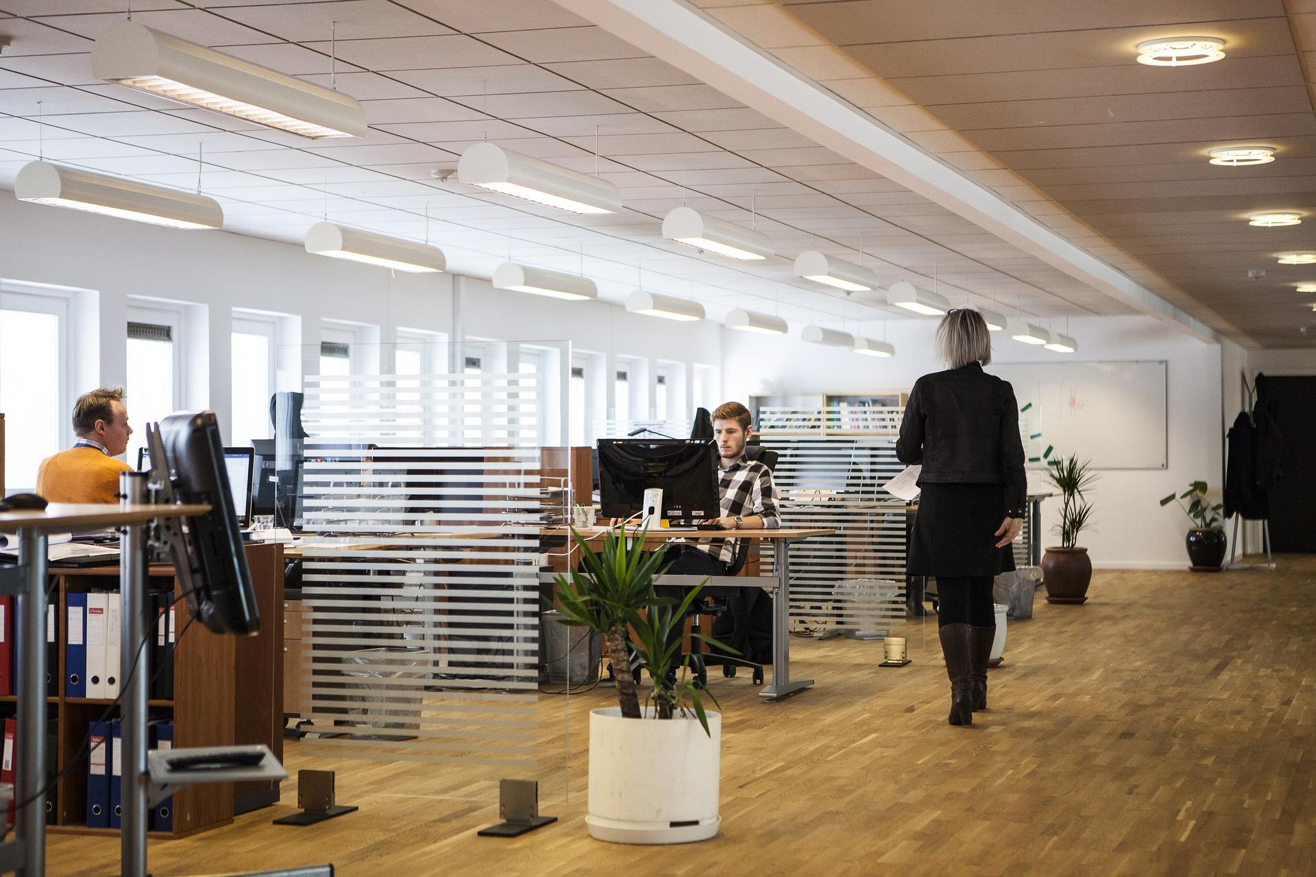 SAP Business ByDesign- servicios profesionales