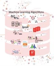innovacion machie learning algorithms