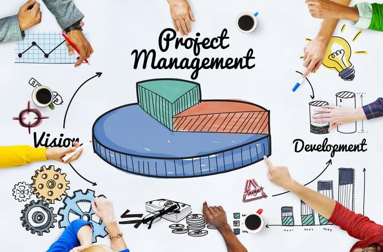 SAP ERP Project Management